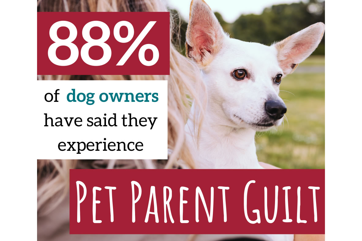 Pet Parent Guilt is Real: Nine in Ten Dog Owners have Experienced it