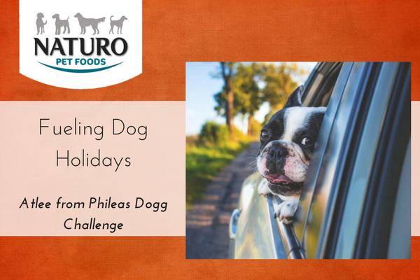 Fueling Dog Holidays