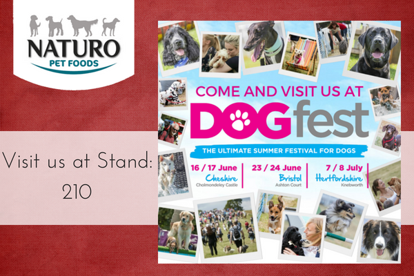 Come and visit us at DogFest this year!