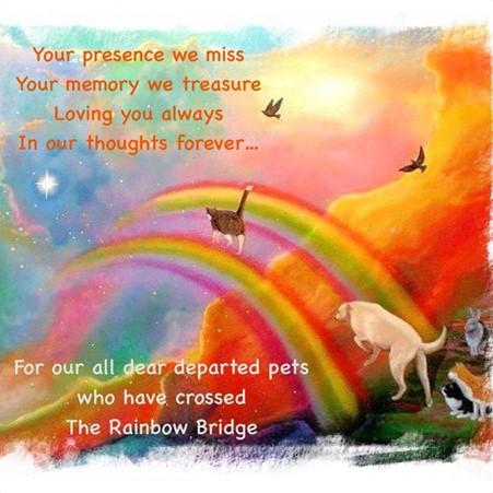 Over the Rainbow Bridge